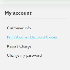 print voucher screen